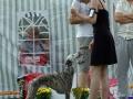 "Gella ""Haute Couture Romantika"" winning Speciality BOB + BIS5, Vilnius 2008"